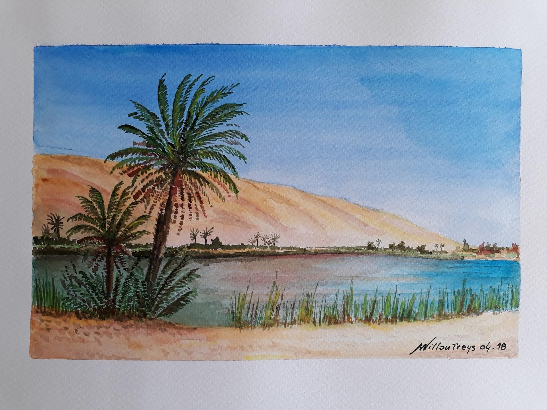 aquarelle sahara