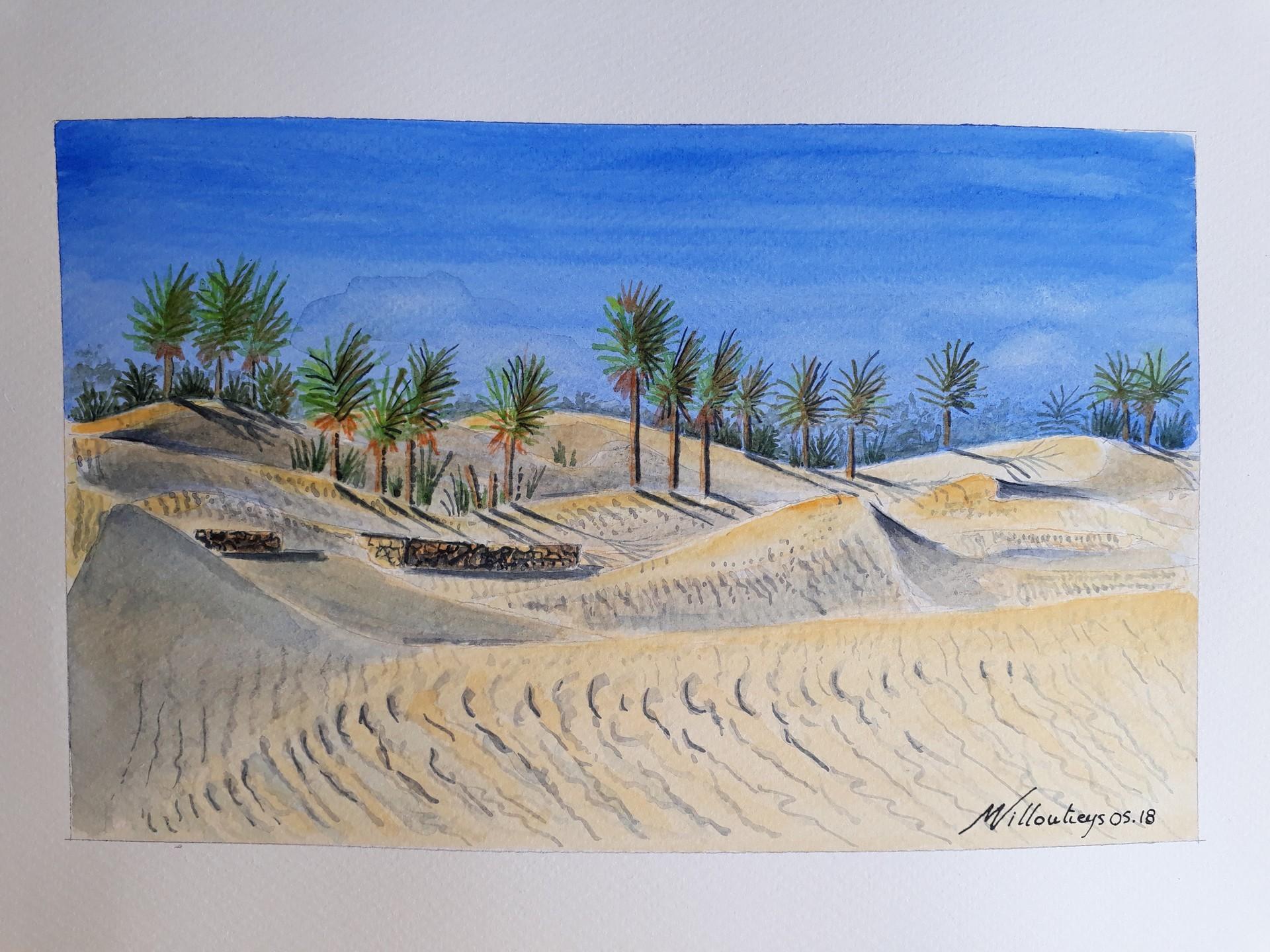 Sahara muret